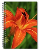 Lily After The Rain Spiral Notebook