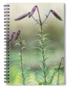 Lily Buds Spiral Notebook