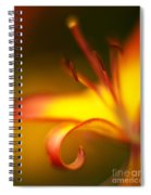 Lily Curls Spiral Notebook