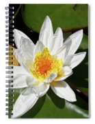 Lily Floating On Pond IIi Spiral Notebook