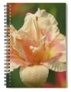 Lily Flower - Daylily Spiral Notebook
