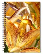 Lily Flower Garden Art Prints Canvas Floral Lilies Baslee Troutman Spiral Notebook