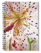 Lily Flower White Lilies Art Prints Baslee Troutman Spiral Notebook