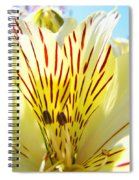 Lily Flowers Art Prints Yellow Lillies 2 Giclee Prints Baslee Troutman Spiral Notebook