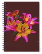 Lily Flowers Pink Maroon Spiral Notebook