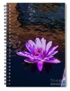 Lily In Pond Spiral Notebook