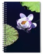 Lily Love II Spiral Notebook