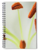 Lily Macro 2 Spiral Notebook
