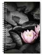 Lily Pad Blossoms Spiral Notebook