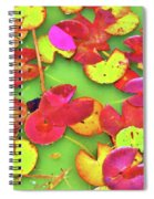 Lily Pad Faces Spiral Notebook