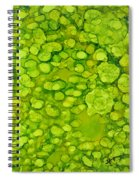 Lily Pad Pond Spiral Notebook