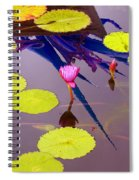 Lily Pads 2 Spiral Notebook