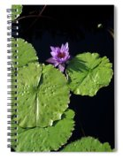 Lily Pads From Above Spiral Notebook