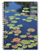 Lily Pads On Blue Pond Spiral Notebook