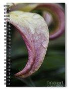 Lily Petal Spiral Notebook