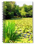 Lily Pond #4 Spiral Notebook