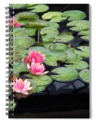 Lily Pond Monet Spiral Notebook