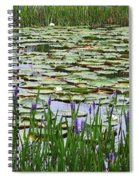 Lily Pond Panorama Spiral Notebook
