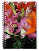 Lily Radiance Spiral Notebook