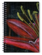 Lily Red Spiral Notebook
