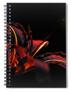 Lily Red-black  Spiral Notebook