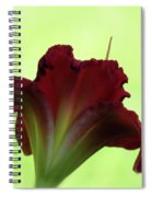 Lily Red On Green Spiral Notebook