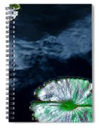 Lilypads And Sky Reflections Spiral Notebook