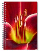 Lily's Way Spiral Notebook