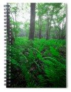 Limberlost IIi Spiral Notebook