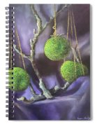 Lime And Violet In Harmony Spiral Notebook