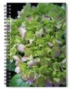 Lime-green Hydrangea Spiral Notebook