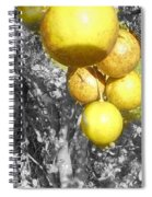Lime Tree Spiral Notebook