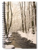 Limentra In Winter Spiral Notebook