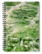 Limestone Detail Minerva Springs Yellowstone National Park Spiral Notebook