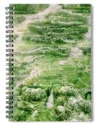 Limestone Detail Minerva Springs Yellowstone National Park Spiral Notebook