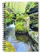 Limestone Waters Spiral Notebook