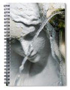 Lincoln Park Conservatory Fountain Spiral Notebook