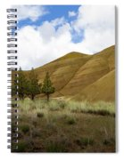 Line Of Trees At Painted Hills Spiral Notebook