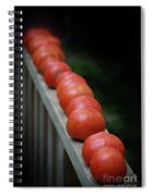 Line'em Up Spiral Notebook