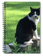 Lingering Lucy Spiral Notebook