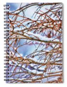 Lingering Winter Snow Spiral Notebook