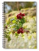Lingonberries 1 Spiral Notebook