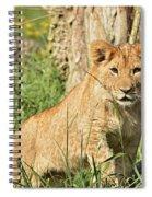Lion Cub 2 Spiral Notebook