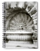 Lion Head Fountain Spiral Notebook