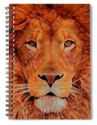 Lion King Spiral Notebook