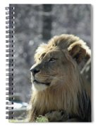 Lion King Spiral Notebook