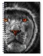 Lion Lady   -3 Spiral Notebook