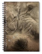 Lion Love Big And Small Spiral Notebook