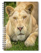 Lion Nature Wear Spiral Notebook