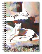 Lionesses At Zoo Spiral Notebook
